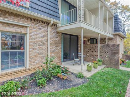 3117 PATRICK HENRY DR #425, Falls Church, VA