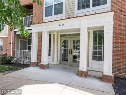 8181 CARNEGIE HALL CT #101 Vienna, VA MLS# FX9980966