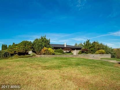 12242A GREENWOOD RD Orange, VA MLS# OR9988884