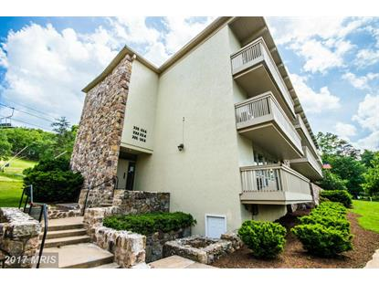 301 FAIRWAY DR #300, Basye, VA