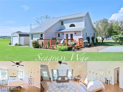 45203 SEAGRASS WAY Piney Point, MD MLS# SM10047478