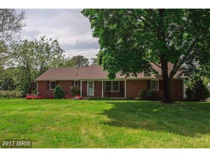 7086 SYCAMORE LN Easton, MD MLS# TA10060766