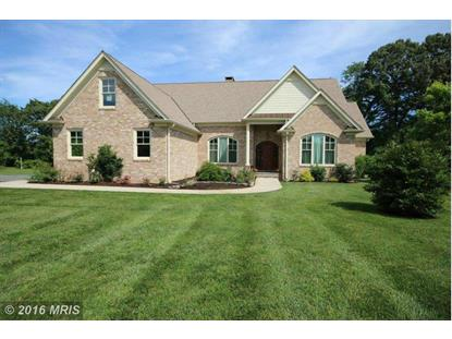 29505 PORPOISE CREEK RD Trappe, MD MLS# TA9657249