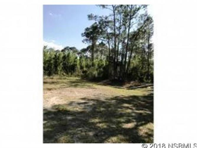 0 Glencoe Farms Rd, New Smyrna Beach, FL 32168