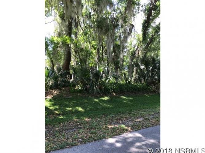 0 Queen Palm Dr, Edgewater, FL 32132 - Image 1