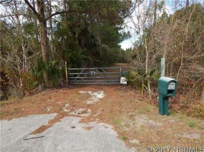 172 Lemon Bluff Rd  Osteen, FL MLS# 1031545