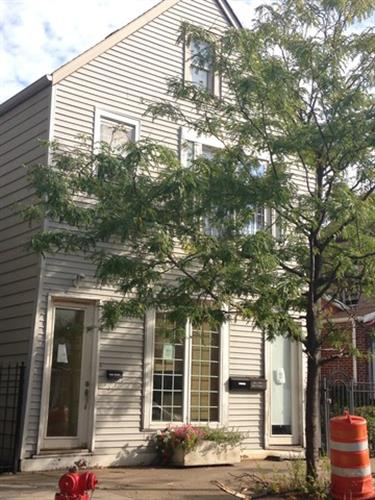 1728 W 18TH Place, Chicago, IL 60608