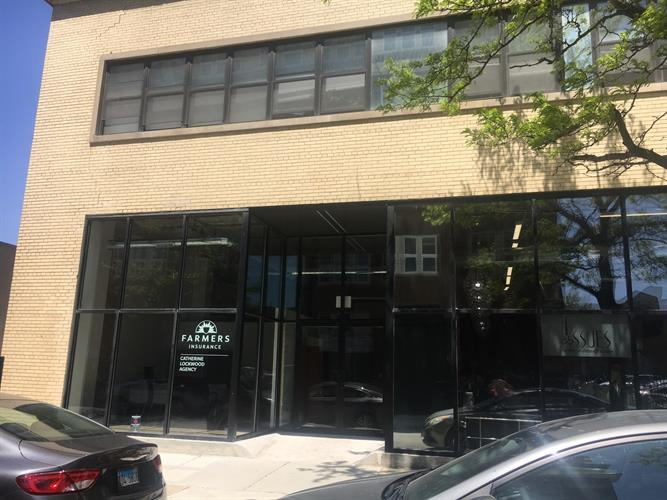 2036 S Michigan Avenue, Chicago, IL 60616