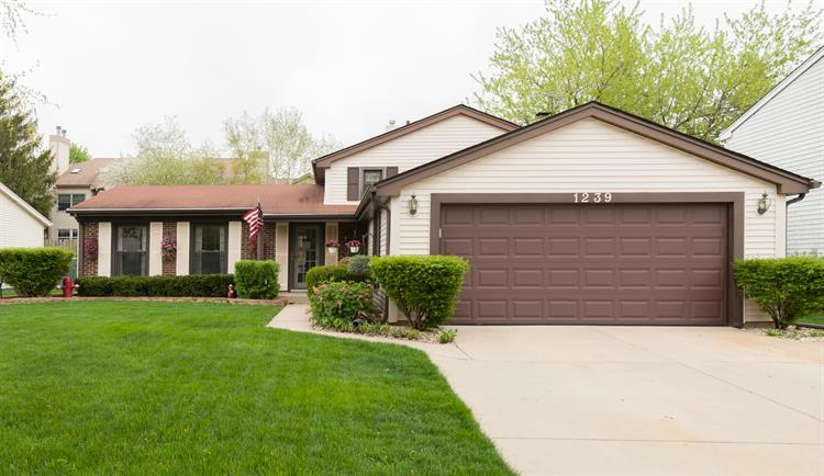 1239 Mill Creek Drive, Buffalo Grove, IL 60089