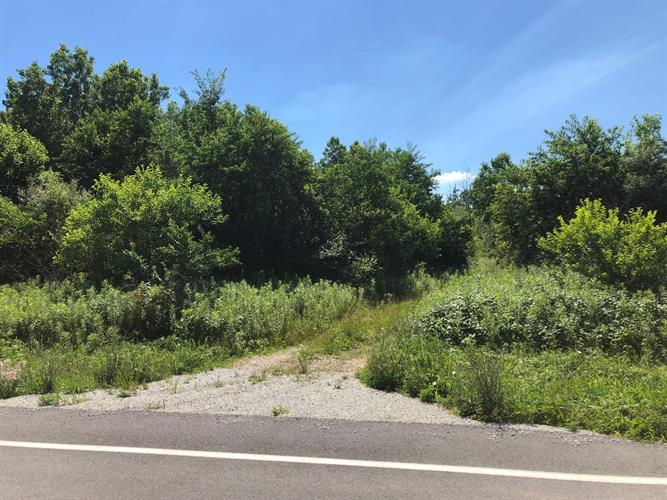 Lot 6 S Zilm Road, Wilmington, IL 60481