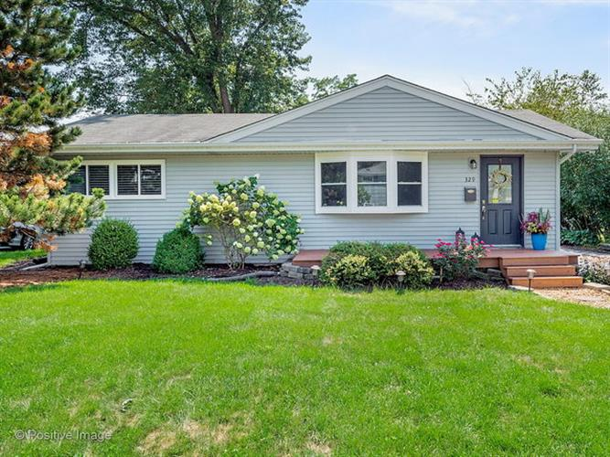 329 Lincoln Avenue, Downers Grove, IL 60515 - Image 1
