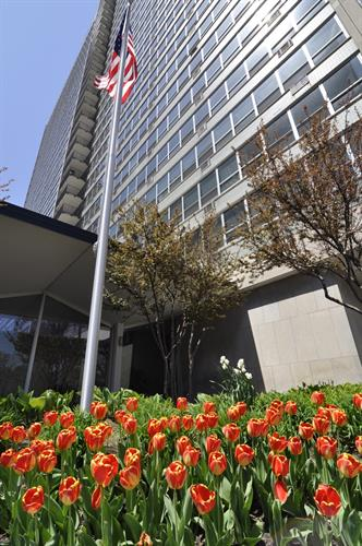 3550 N LAKE SHORE Drive, Chicago, IL 60657 - Image 1