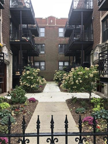 1155 W Grace Street, Chicago, IL 60613 - Image 1