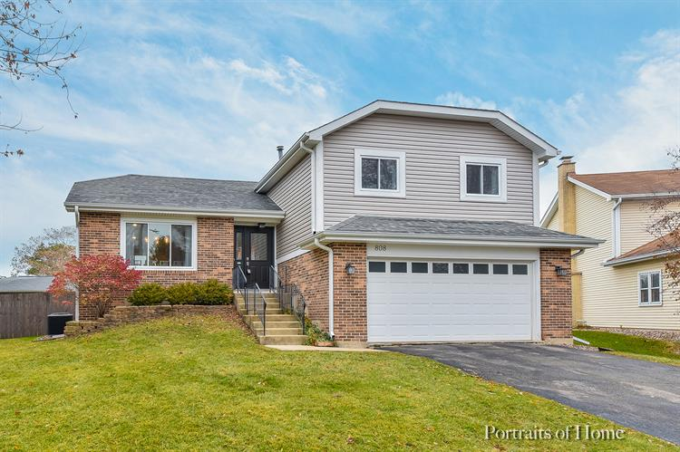 808 Anthony Court, Naperville, IL 60563 - Image 1