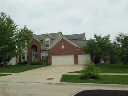 103 Cottonwood Drive Streamwood, IL MLS# 08959583