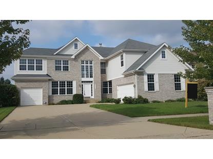 480 Blue Heron Circle Bartlett, IL MLS# 09283165