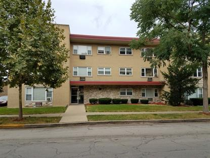 415 S Maple Avenue, Oak Park, IL