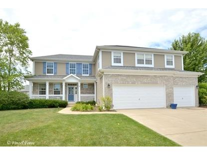 8 Birchwood Court Lake in the Hills, IL MLS# 09494365
