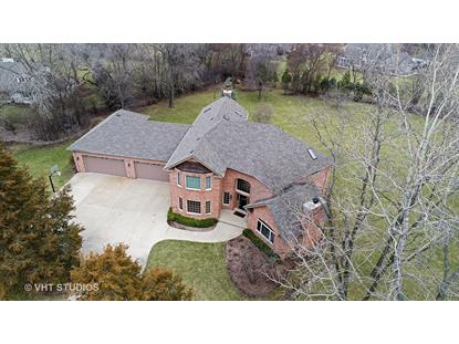 407 Hypoint Drive Deer Park, IL MLS# 09499658