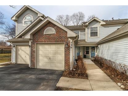 790 Ripple Brook Court Elgin, IL MLS# 09506950
