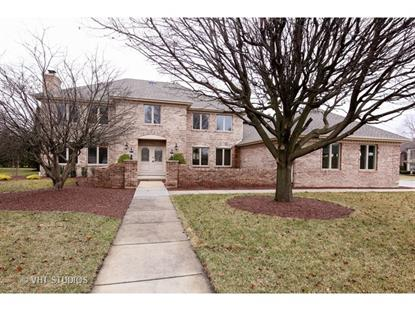 8737 Carriage Green Drive Darien, IL MLS# 09519111