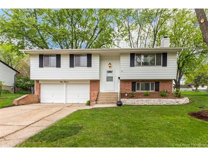 512 Plymouth Lane Schaumburg, IL MLS# 09625694