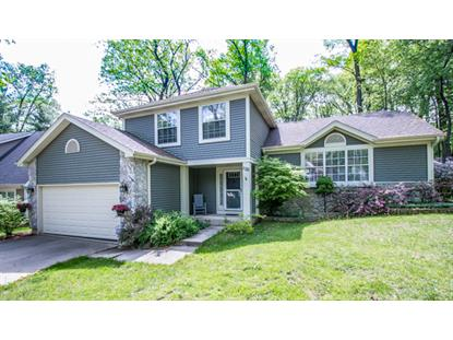 1125 Oak Ridge Drive, Streamwood, IL