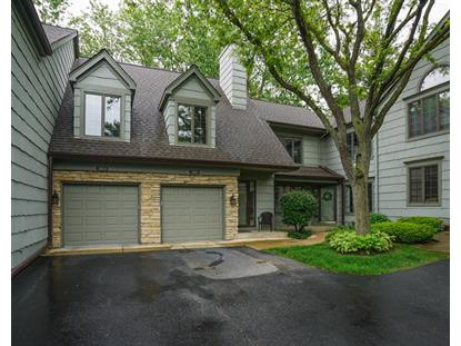 1009 Torrey Pines Court Darien, IL MLS# 09640022