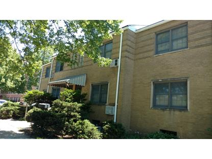 601 S Maple Avenue, Oak Park, IL