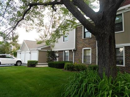 272 Middlebury Court Schaumburg, IL MLS# 09676955