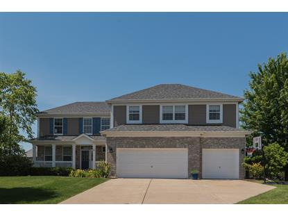 8 Birchwood Court Lake in the Hills, IL MLS# 09687597