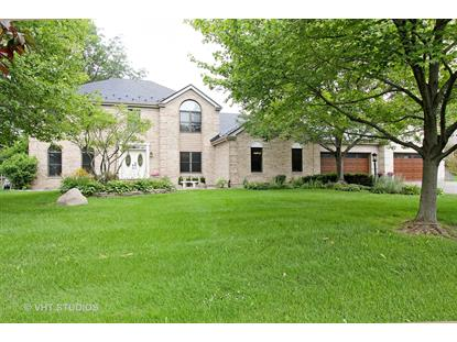 22056 N Old Farm Road Deer Park, IL MLS# 09688890