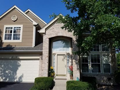 72 WELLESLEY Circle Northbrook, IL MLS# 09733112