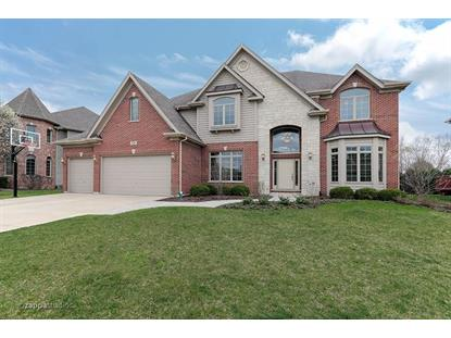 528 Eagle Brook Lane, Naperville, IL