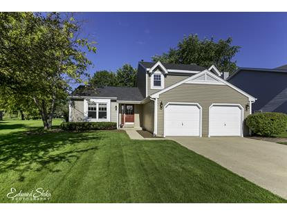 1146 WINDSLOW Circle, Crystal Lake, IL