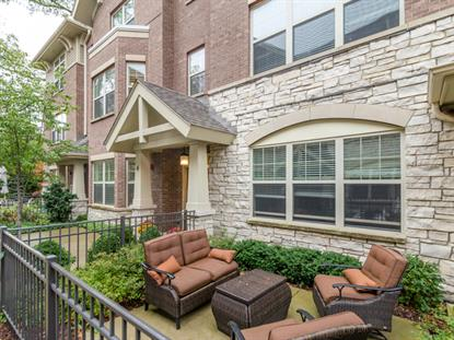 New Homes For Sale In Park Ridge IL