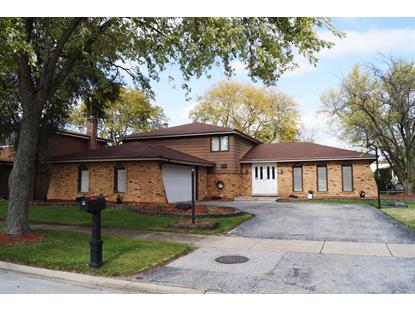 1010 E 192nd Place Glenwood, IL MLS# 09807052