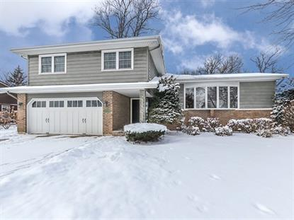 954 Chippewa Drive, Elgin, IL
