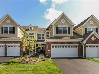 1264 Falcon Ridge Drive, Elgin, IL
