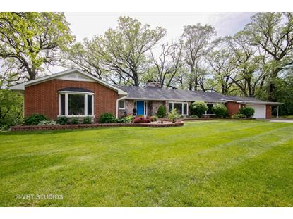 16 Riegel Oaks Lane Homewood, IL MLS# 09861237