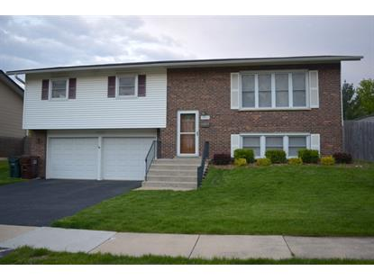16818 Gaynelle Road, Tinley Park, IL