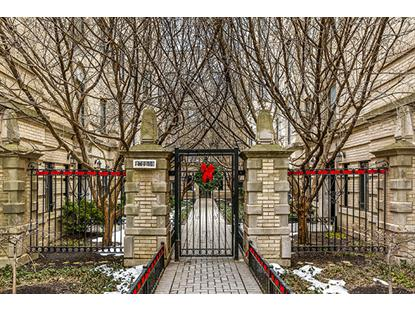 2728 N Pine Grove Avenue, Chicago, IL
