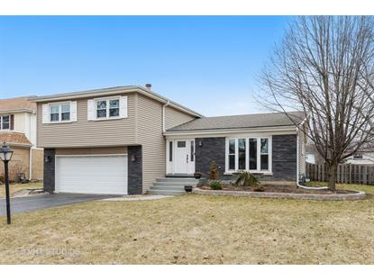 1711 N Burning Bush Lane, Mount Prospect, IL