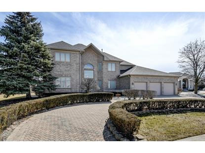 19 Odyssey Drive, Tinley Park, IL