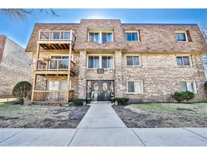 2619 W Agatite Avenue, Chicago, IL
