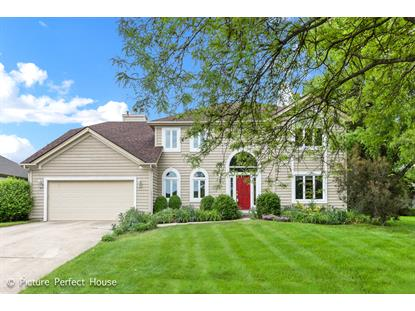 335 Knoch Knolls Road, Naperville, IL