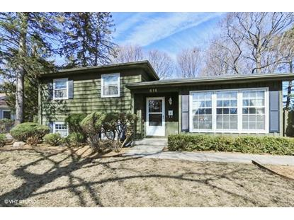 616 E LINCOLN Avenue, Libertyville, IL