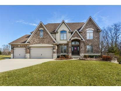 21261 S Wooded Cove Drive, Elwood, IL