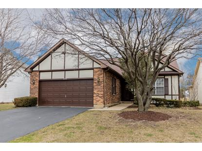 21040 Hazelnut Lane, Plainfield, IL
