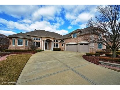 10916 WHITE DEER Circle, Orland Park, IL